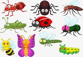 ما تفسير الحشرات في المنام , تفسير رؤية الحشرات في الحلم