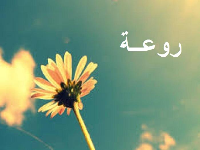 صورة صور اسم روعه , اجمل صور لاسم روعه