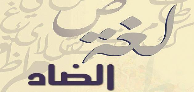 صورة مقدمة عن يوم اللغة العربية , ماهو يوم اللغه العربيه 2692 4