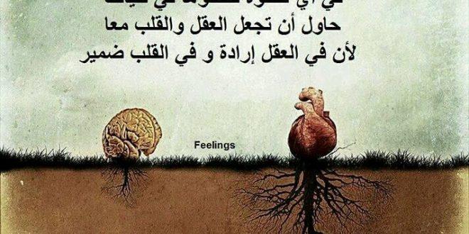 صورة صور روعه حلوه , وصف ارقى المشاعر بالصور