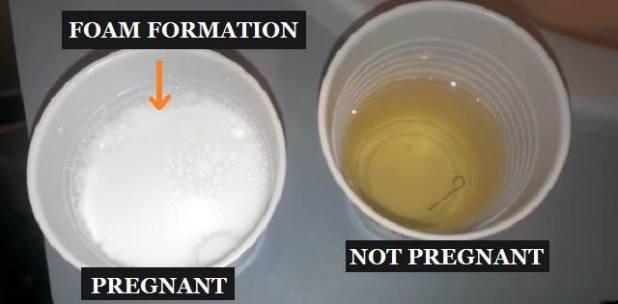 صورة اختبار حمل منزلي طبيعي , طريقة طبيعية لاختبار الحمل