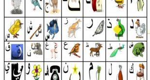 صور حروف الهجاء بالصور للاطفال , تعليم الاطفال الحروف بالصور