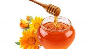 خلطة عسل للمتزوجين , تعرف علي فوائد العسل