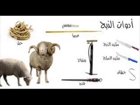 صورة الدعاء عند ذبح الاضحيه , المستحب قوله عند ذبح الحيوانات