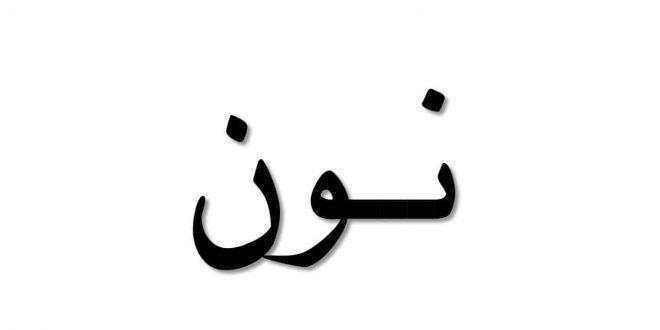 صورة اسم حيوان بحرف ن , معلومات عن النعامه