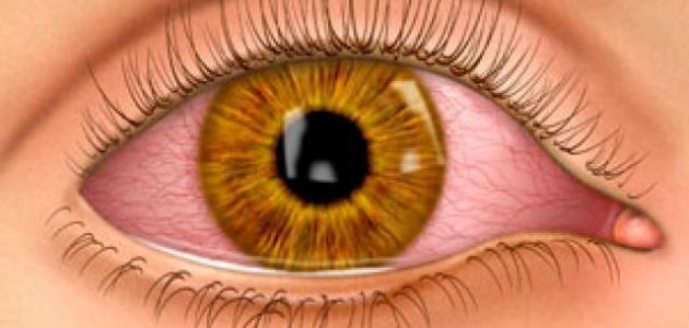 صورة كيف تتم عملية الرؤية , معلومات هامه عن العيون