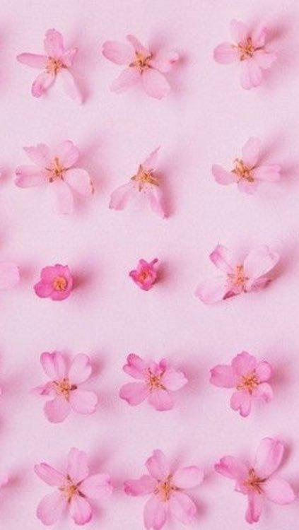 صورة خلفيات لون وردي , اجمل خلفيات للبنات