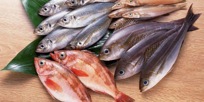 صورة تفسير حلم اكل السمك المقلي للمتزوجه , تاويل رؤية السمك المقلي في المنام