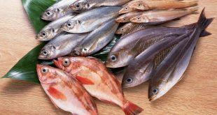 صورة حلمت اني اكل سمك , تفسير اكل السمك في المنام