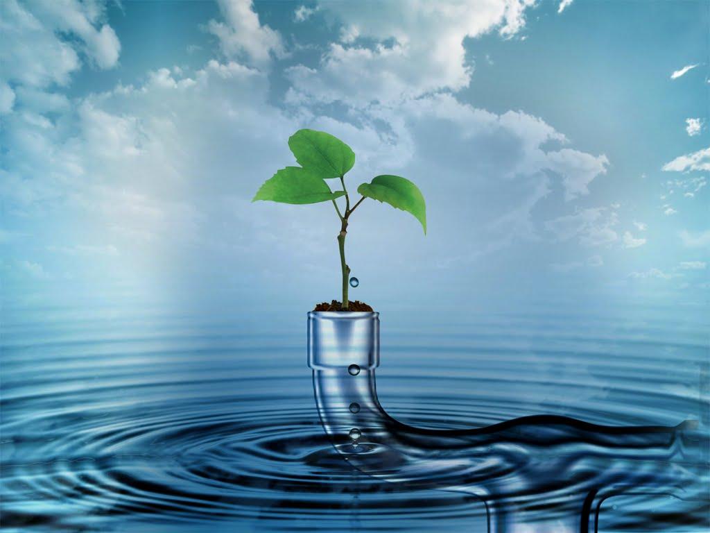 صورة موضوع تعبير الماء , فضل الماء علينا عظيم 2447 2