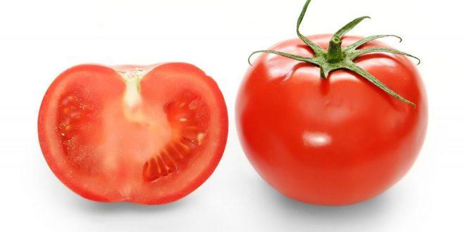 صورة مفرد كلمة طماطم , تعلم لغتك
