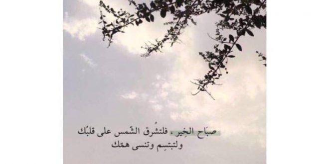 صورة كلمات الصباح والتفاؤل , جدد صباحك كل يوم