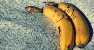 صورة فوائد اكل الموز , اهم فوائدة ثمرة موز واحدة