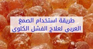 صورة الصمغ العربي لعلاج الفشل الكلوي , افضل وصفة طبيعية للشفاء من الفشل الكلوى