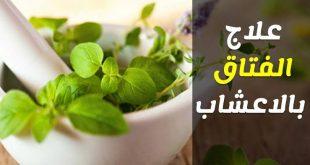 صورة علاج الفتق بالاعشاب , اعشاب طبيعية تغنى عن الجراحة