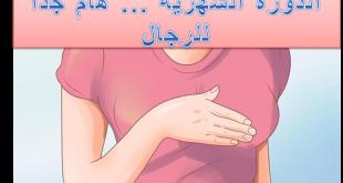 صورة معلومات عن الدورة الشهرية , كل مايهمك معرفته عن الدورة الشهرية