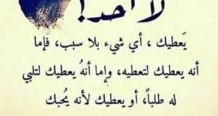صورة شعر حزين وقصير , ابلغ بيت شعر يوصف المك وحزنك