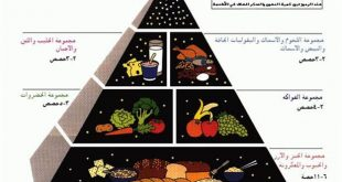 صورة نظام غذائي صحي متكامل , مكونات النظام الغذائى