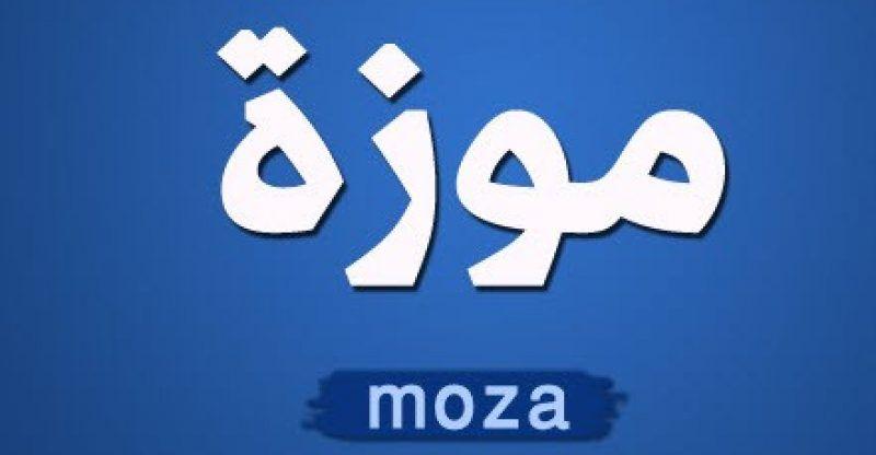 صورة معنى كلمة مزة , مزة جميله