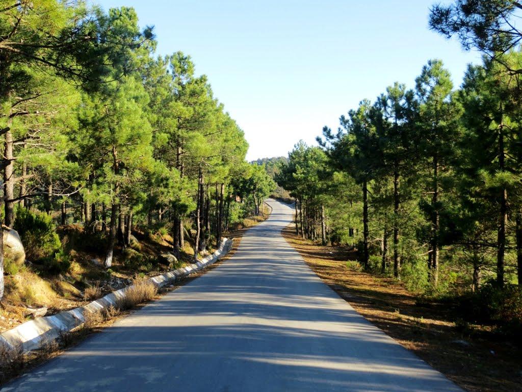 صورة الله على جمال المناظر الطبيعية فى الجزائر وهم , مناظر خلابة في الجزائر 272 3