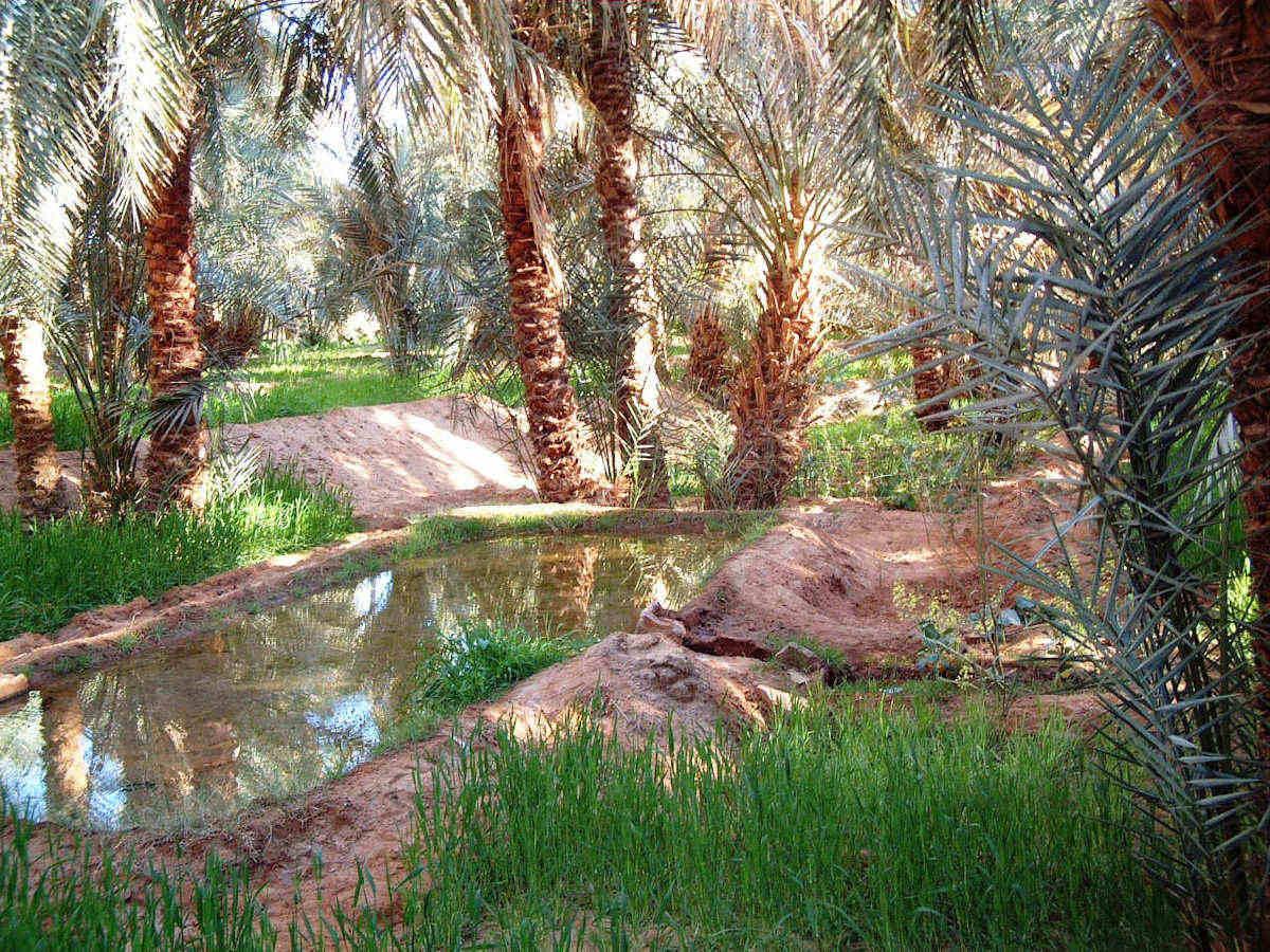 صورة الله على جمال المناظر الطبيعية فى الجزائر وهم , مناظر خلابة في الجزائر 272 4
