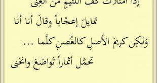 صورة ما لا تعرفه عن شعراء العرب فى الجاهلية , اجمل ما قاله العرب