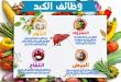 صورة تعرف على الاكلات الصحية المغذية للكبد,اغذية مفيدة للكبد