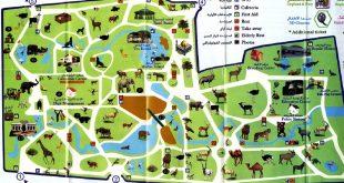 صورة اكبر حديقه حيوان فى الشرق الاوسط كلو , خريطة حديقة الحيوان 1740 1 310x165