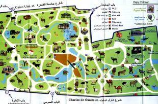صورة اكبر حديقه حيوان فى الشرق الاوسط كلو , خريطة حديقة الحيوان 1740 1 310x205
